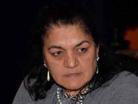 Daróczi Ágnes a Romano Instituto Alapítvány (Cigányságkutató Intézet) vezetője