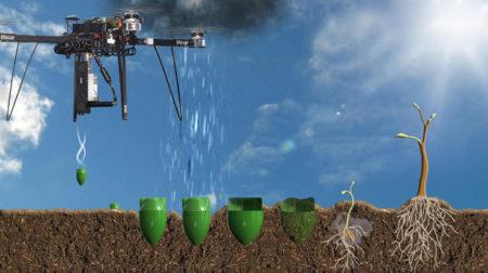 A biológiai úton lebomló edénykék a fák magvait és talajjavító mikroorganizmusokat tartalmaz (http://www.biocarbonengineering.com/)