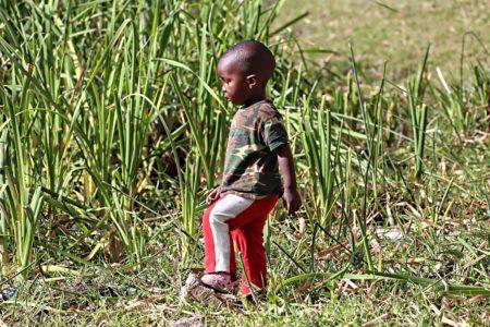 Árván Helyszín: Kenya A Szerző felvétele